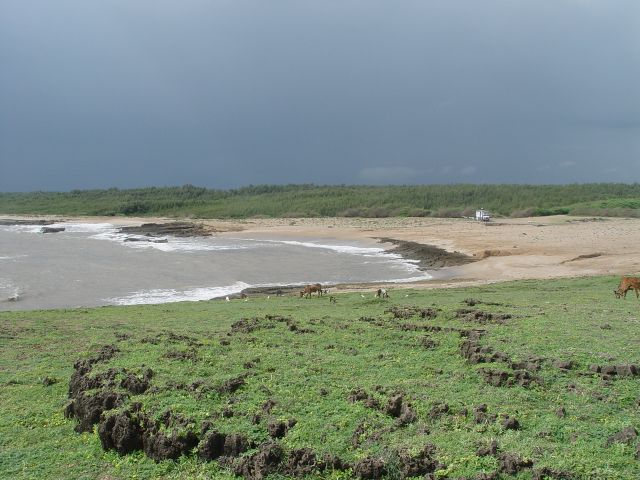 LoGi am Gomptimata-Beach in Diu.