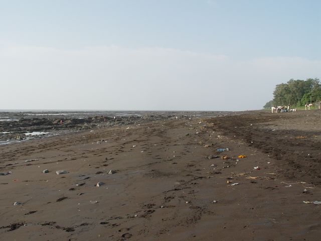 Ebbe am Strand in Daman.